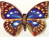 Флеш игра Бабочки: Поиск отличий