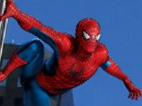 Флеш игра Человек паук 3: Фото охота