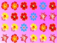 Флеш игра Цветочное безумие