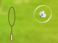 Флеш игра Цветы в пузырях