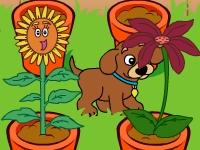 Флеш игра Даша путешественница: Магический сад
