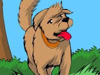 Флеш игра Девушка и собака