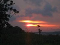 Флеш игра Дождевые леса Амазонии: Пазл