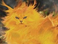 Флеш игра Фантастический кот