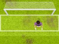 Флеш игра Футбольный чемпионат в Бразилии