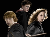 Флеш игра Гарри Поттер и дары смерти 8