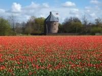 Флеш игра Голландия: Пазл