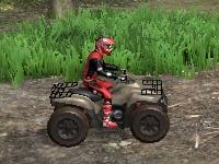 Флеш игра Гонка на квадроцикле 3D