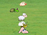 Флеш игра Гонка с животными