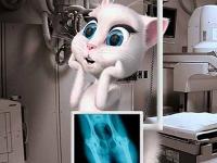 Флеш игра Говорящая Анджела делает рентген