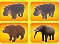 Флеш игра Игры с животными