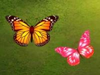 Флеш игра Коннект бабочек