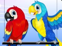 Флеш игра Красочные попугаи