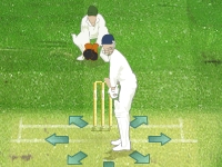 Флеш игра Крикет 2009