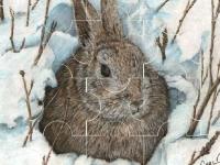 Флеш игра Кролик на снегу: Пазл