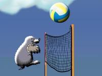 Флеш игра Кроты играют в волейбол