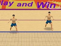 Флеш игра Летние игры: Волейбол