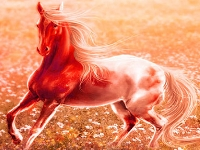 Флеш игра Лошадь на пшеничном поле