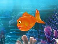 Флеш игра Лови рыб парами