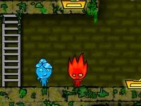 Флеш игра Мальчик огонь и девочка вода в храме леса 4