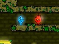 Флеш игра Мальчик огонь и девочка вода в храме леса