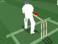 Флеш игра Матч в крикет