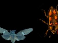 Флеш игра Мотылек защитник
