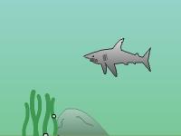 Флеш игра Нападение на акулу