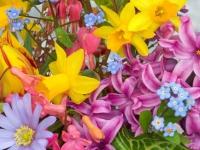 Флеш игра Найди цветы