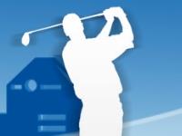 Флеш игра Невероятный гольф