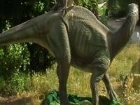 Флеш игра Отличия динозавров