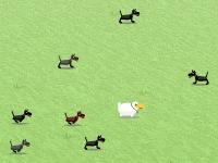 Флеш игра Овца в панике