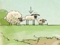 Флеш игра Овцы идут домой