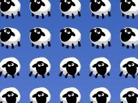 Флеш игра Овцы - захватчики