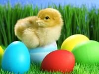 Флеш игра Пасхальные яйца: Пазл