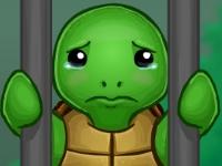 Флеш игра Побег черепашек из зоопарка