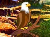 Флеш игра Побег из святилища совы