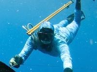 Флеш игра Подводная охота