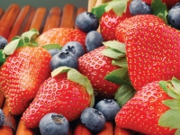 Флеш игра Поиск чисел во фруктах