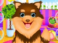 Флеш игра Помой щеночка