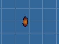 Флеш игра Поймай жука