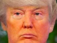 Флеш игра Прическа для Трампа
