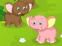 Флеш игра Приют для маленьких животных