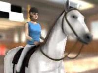 Флеш игра Прыжки через барьер на лошади 3D