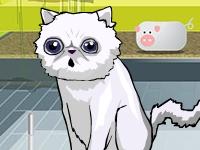 Флеш игра Пукающий кот