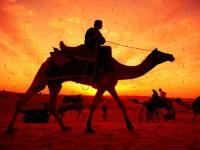 Флеш игра Пустыня: Пазл