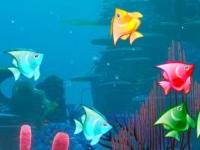 Флеш игра Разноцветная рыбка