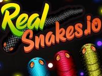 Флеш игра Реальные змейки