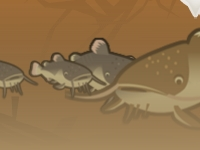 Флеш игра Рыбалка на сома