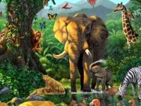 Флеш игра Сафари с животными: Поиск предметов
